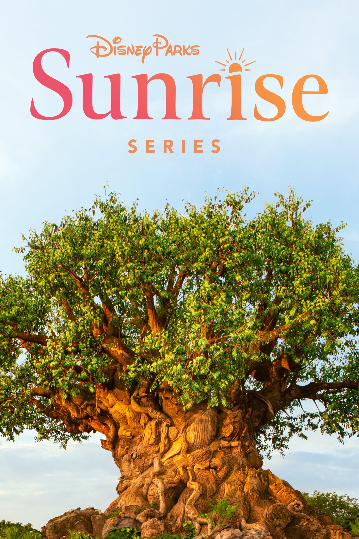 Disney Parks Sunrise Series