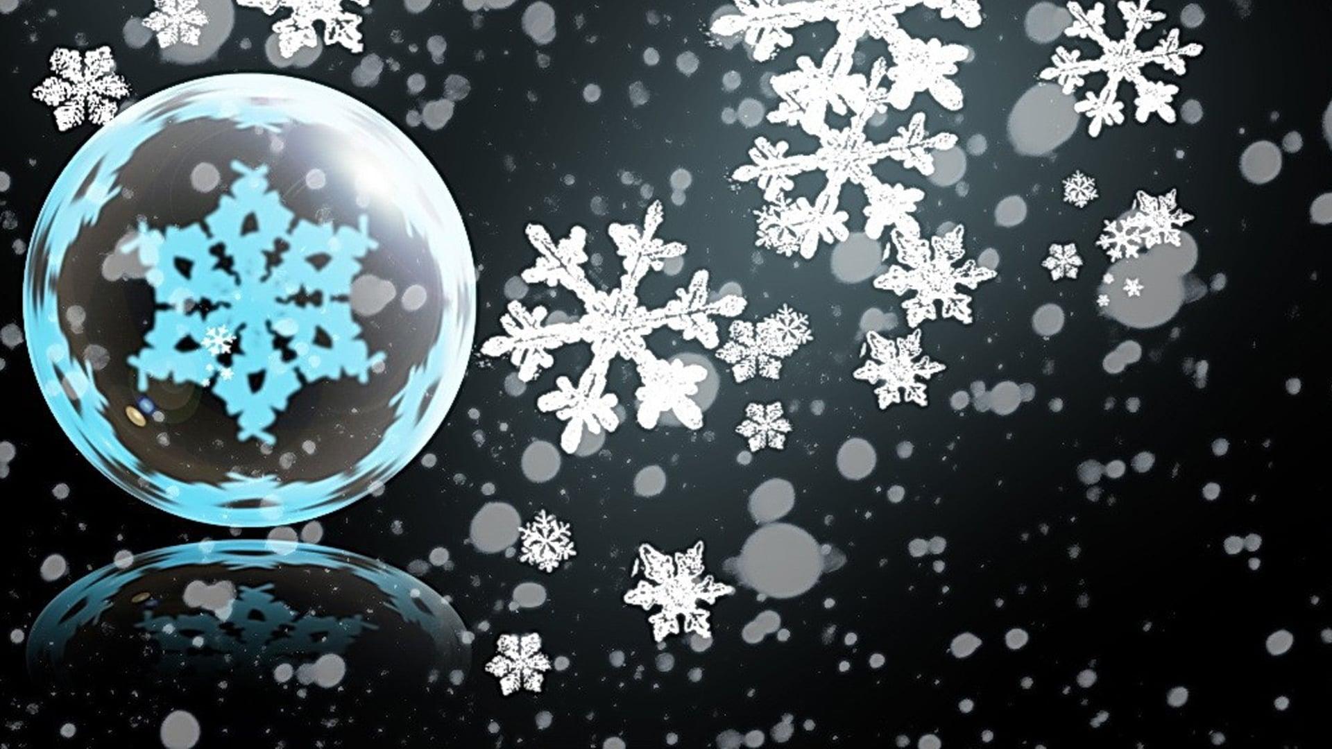 12 дни до Коледа