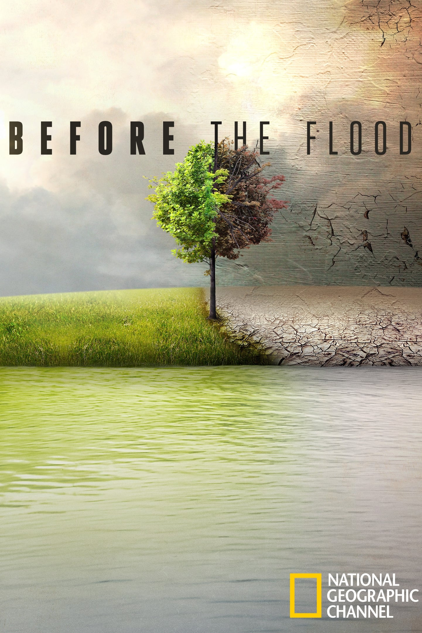 წყალდიდობამდე / Before the Flood