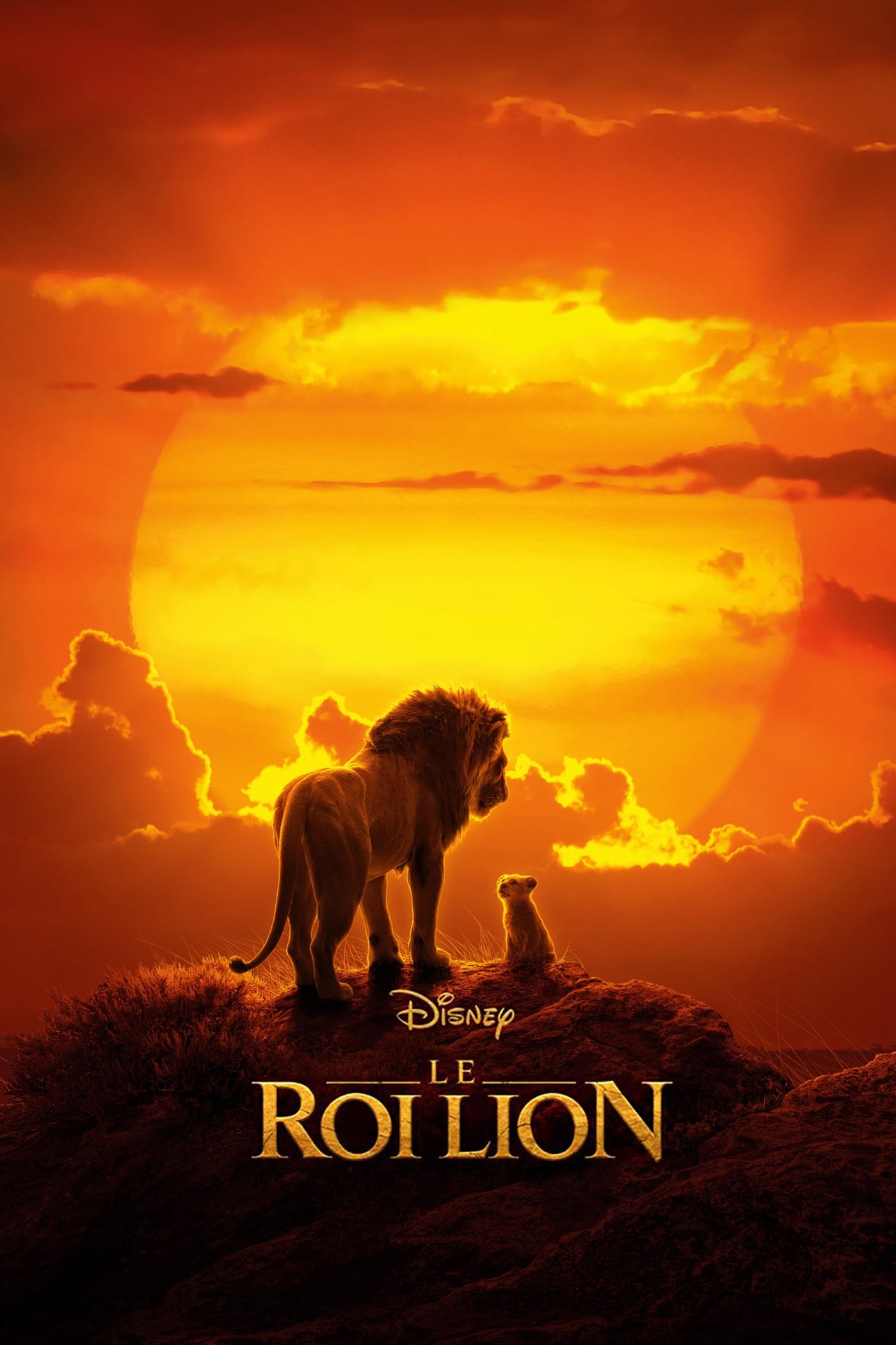 Le Roi Lion streaming sur zone telechargement