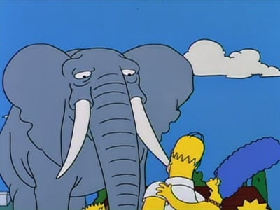 The Simpsons Season 5 :Episode 17  Bart Gets an Elephant
