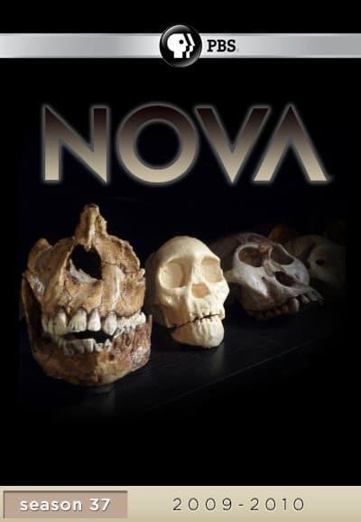 NOVA Season 37