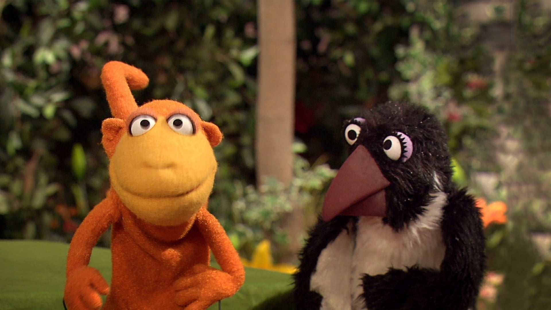 Sesame Street Season 47 :Episode 20  Wild Animals Shop for Lunch (repeat)