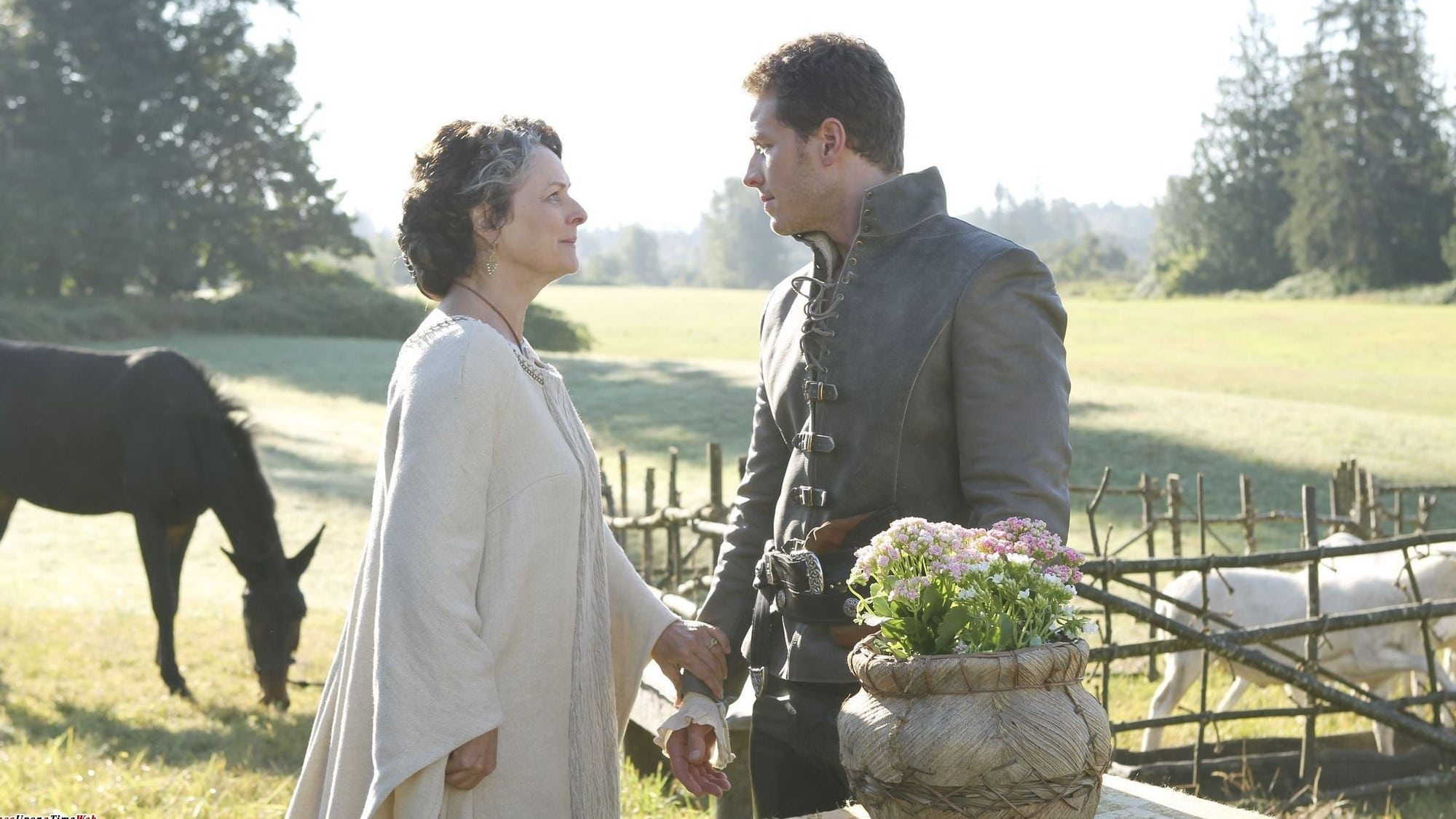 Once Upon a Time Season 1 :Episode 6  The Shepherd