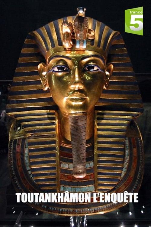 Ver Tutankhamun: The Mystery of the Burnt Mummy Online HD Español (2013)