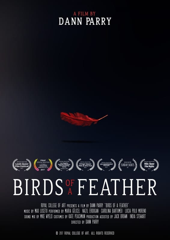 Ver Birds of a Feather Online HD Español ()