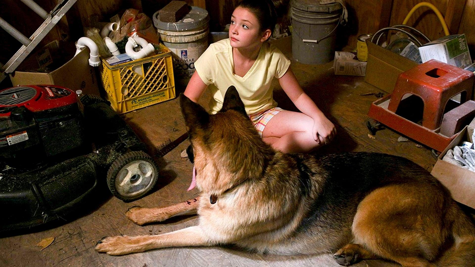 Un amor de cachorro