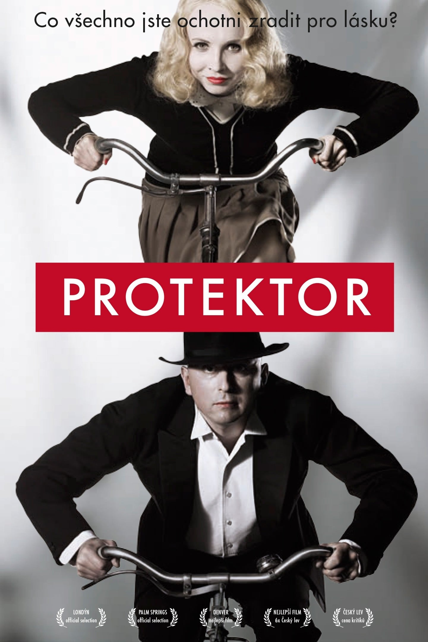 The Protector (2011)