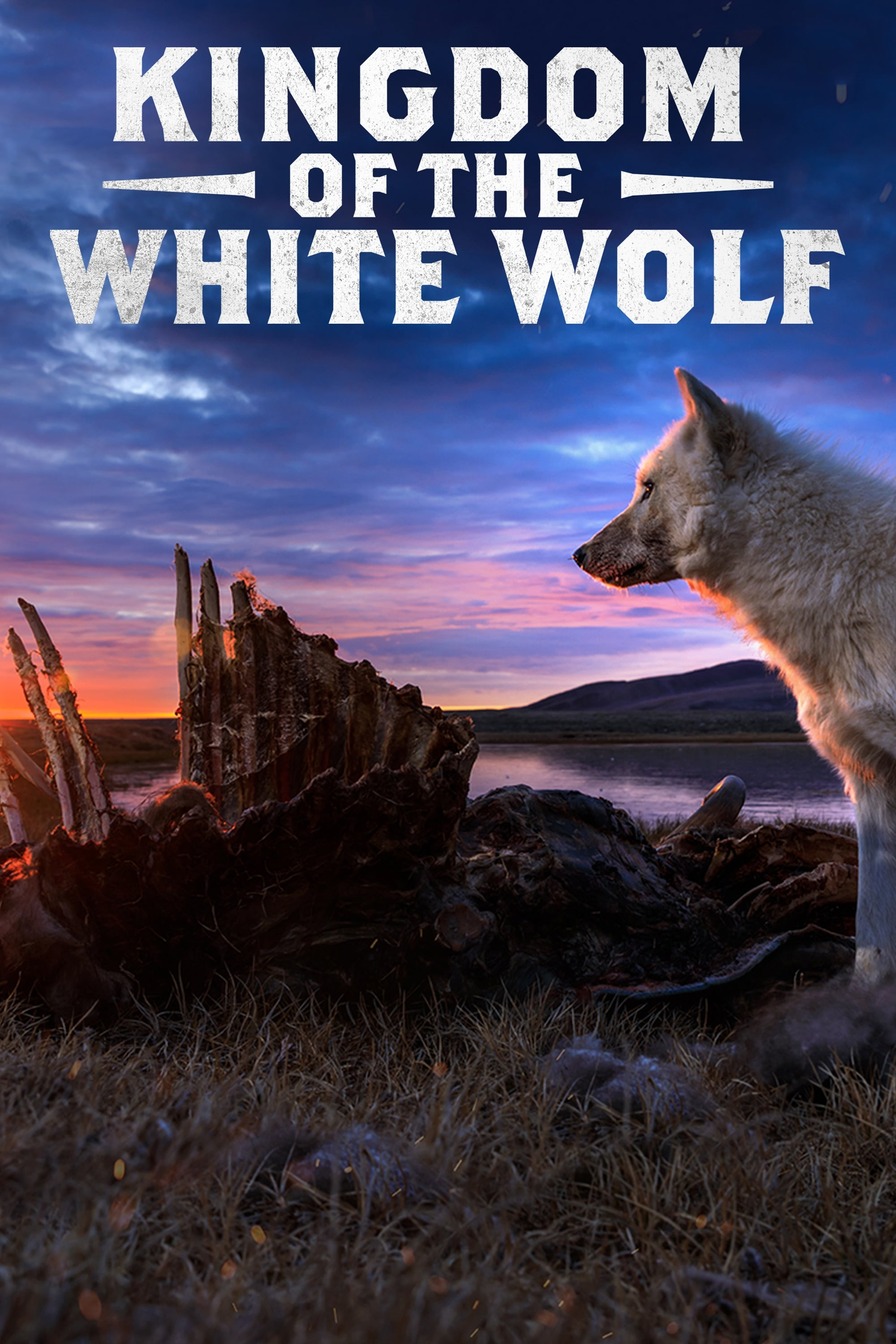 Kingdom of the White Wolf TV Shows About Nature Documentary