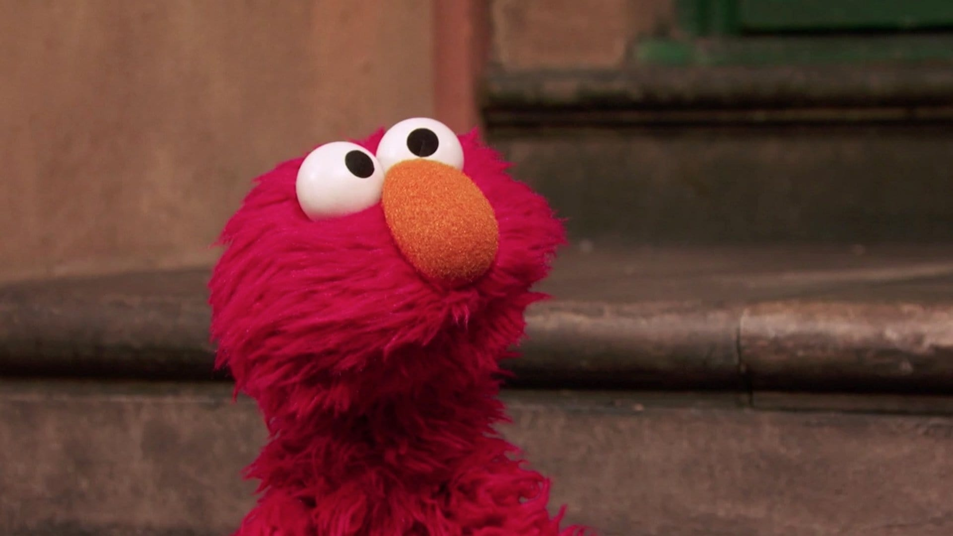 Sesame Street Season 48 :Episode 13  Book Worming