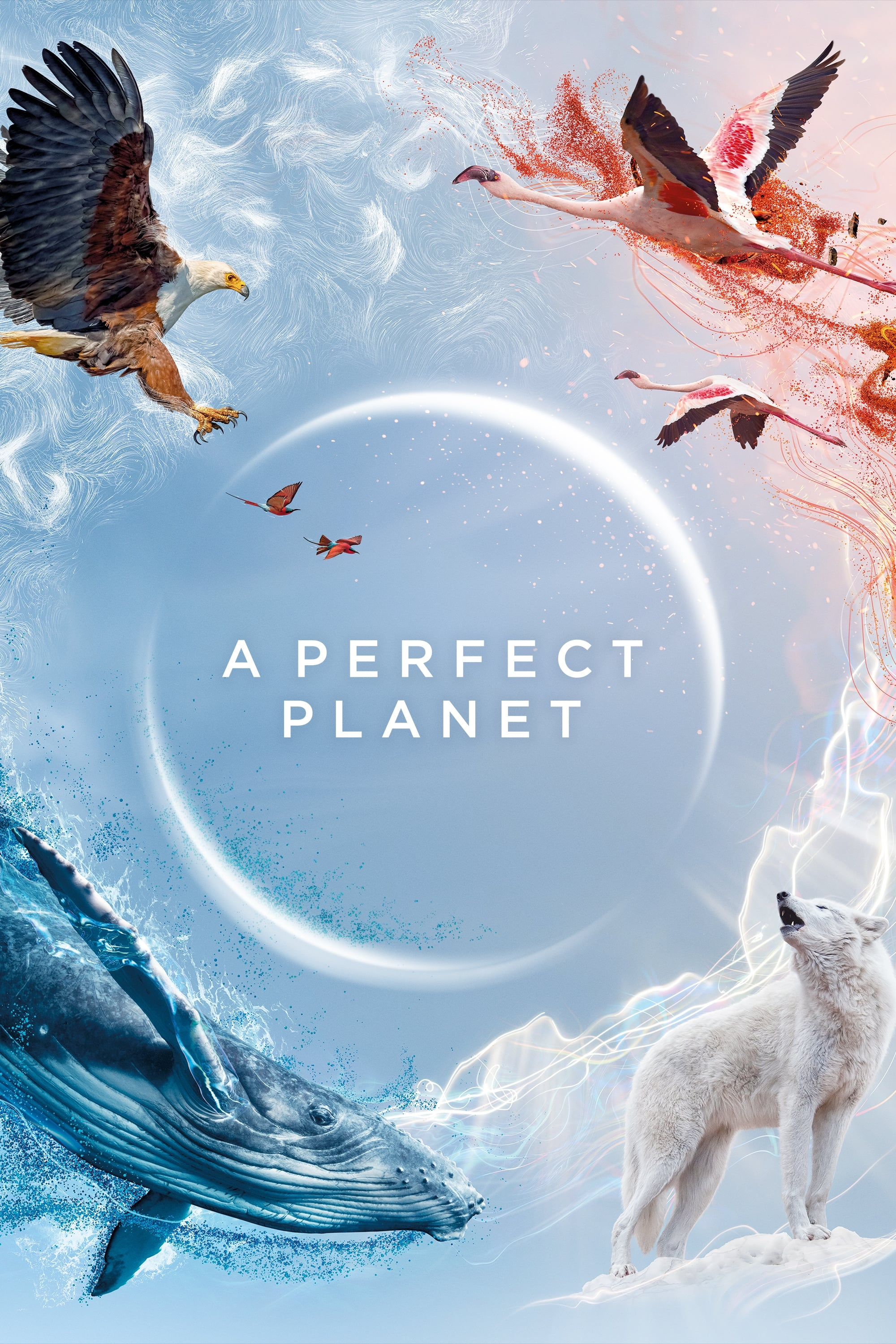 A Perfect Planet TV Shows About Wildlife