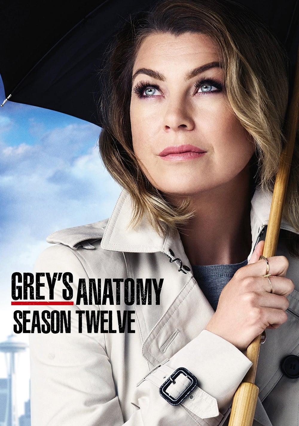 Anatomía de Grey Season 12