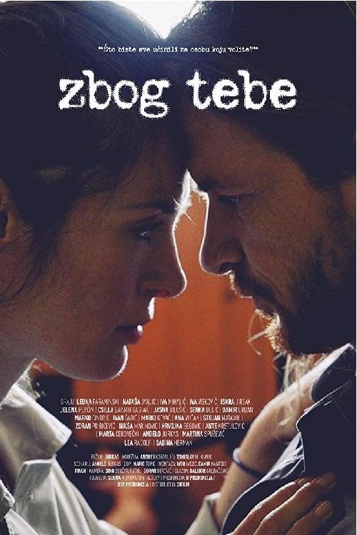 Ver Because of You Online HD Español (2016)