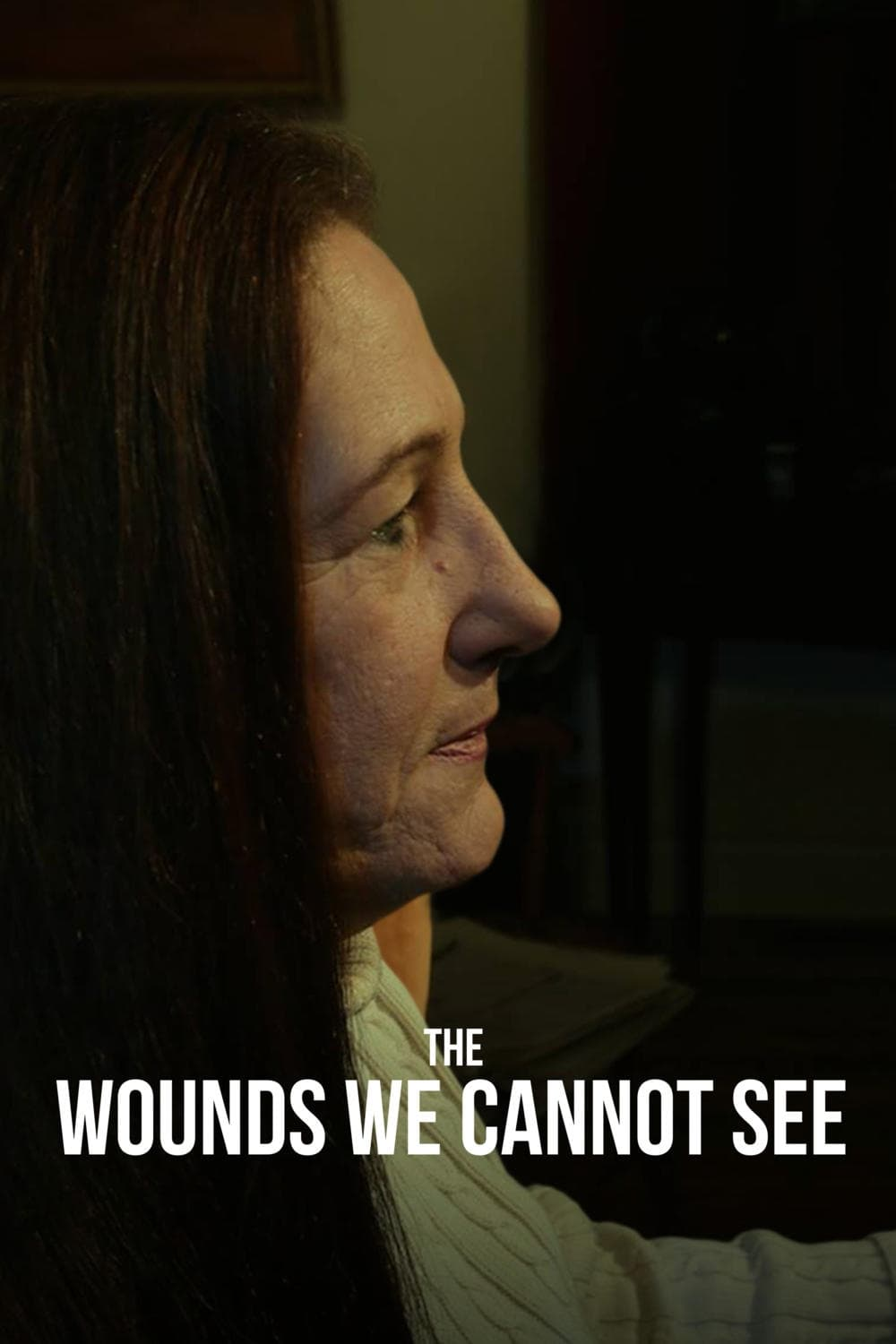 The Wounds We Cannot See (2017)
