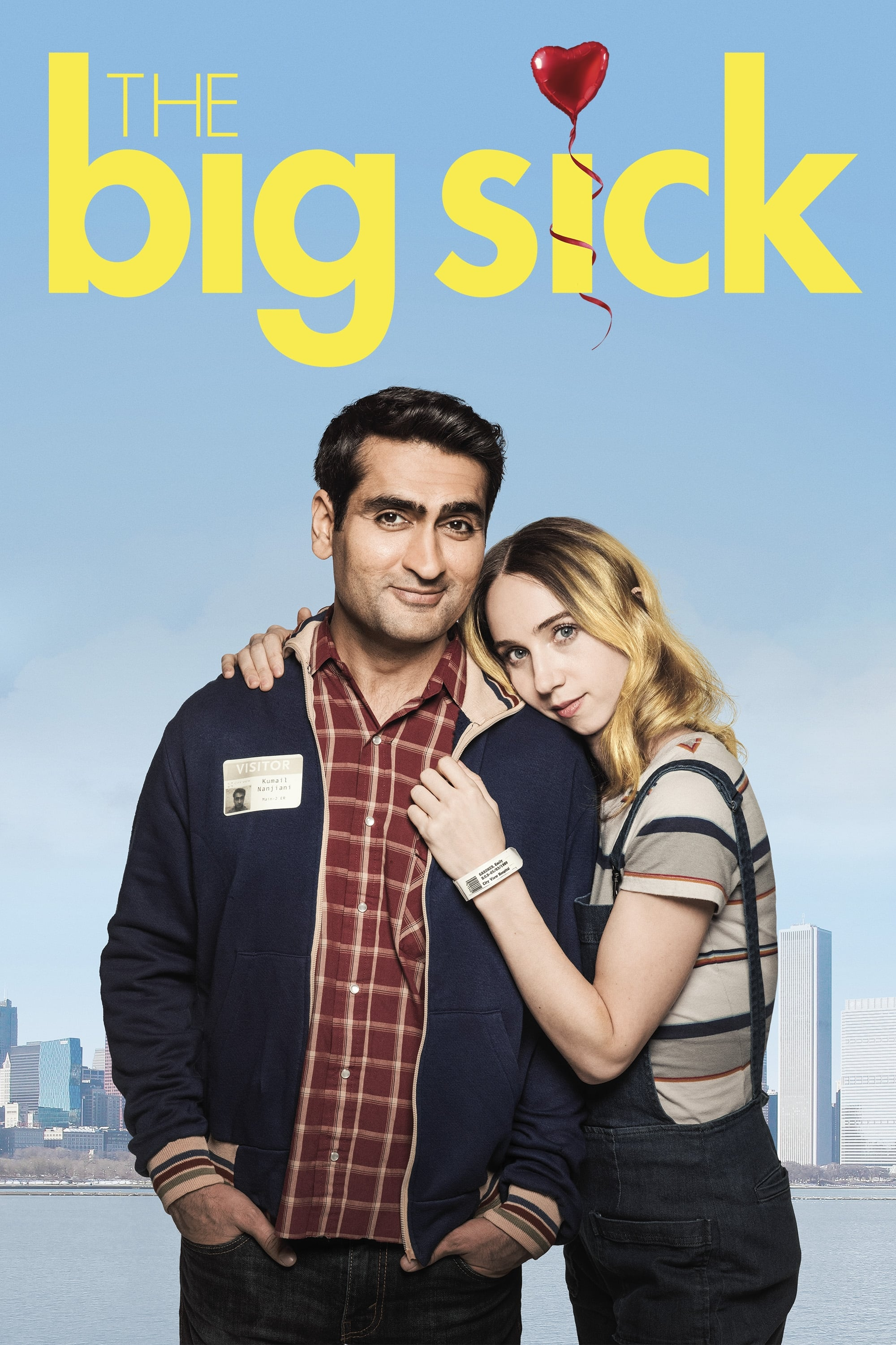 The Big Sick Stream English