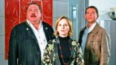 Die Rosenheim-Cops Season 7 :Episode 28  Löscheinsatz für eine Leiche