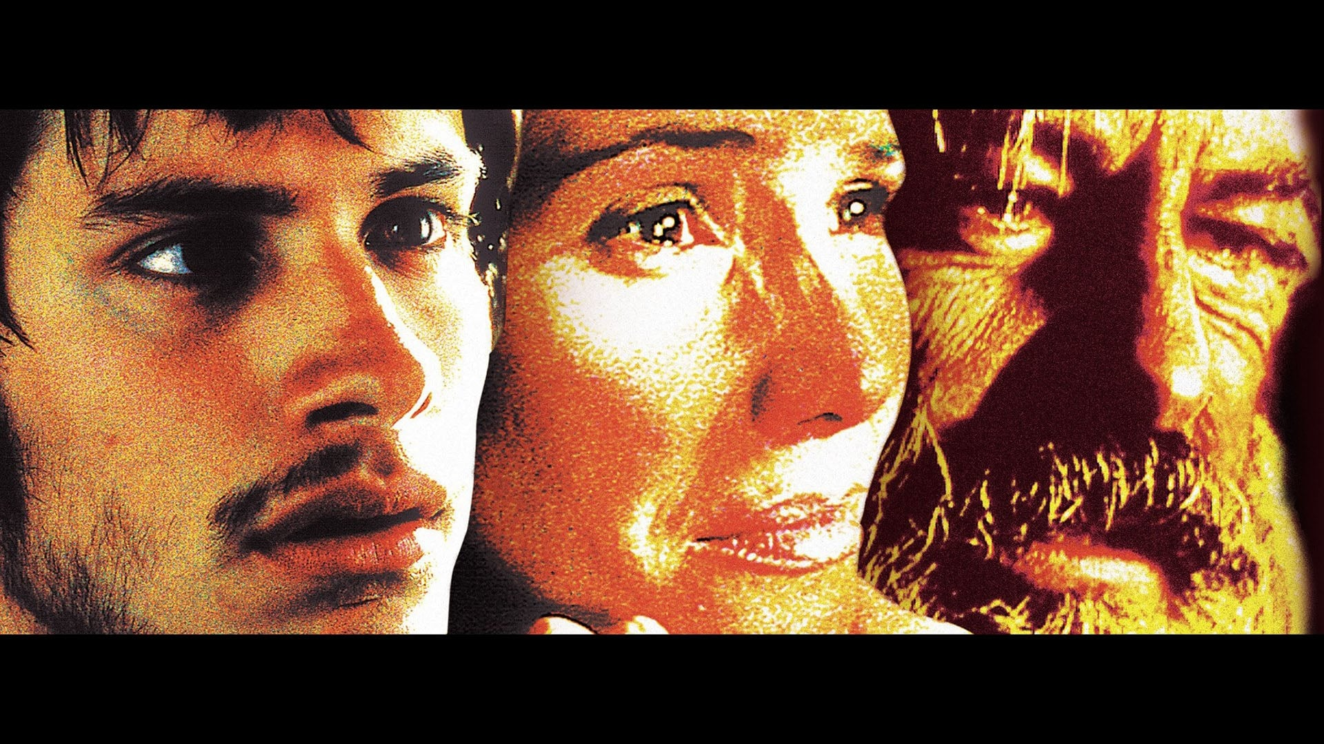 Amores Perros 2000 amores perros (2000) - backdrops — the movie database (tmdb)
