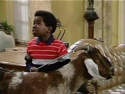 Diff'rent Strokes Season 6 :Episode 2  The Goat