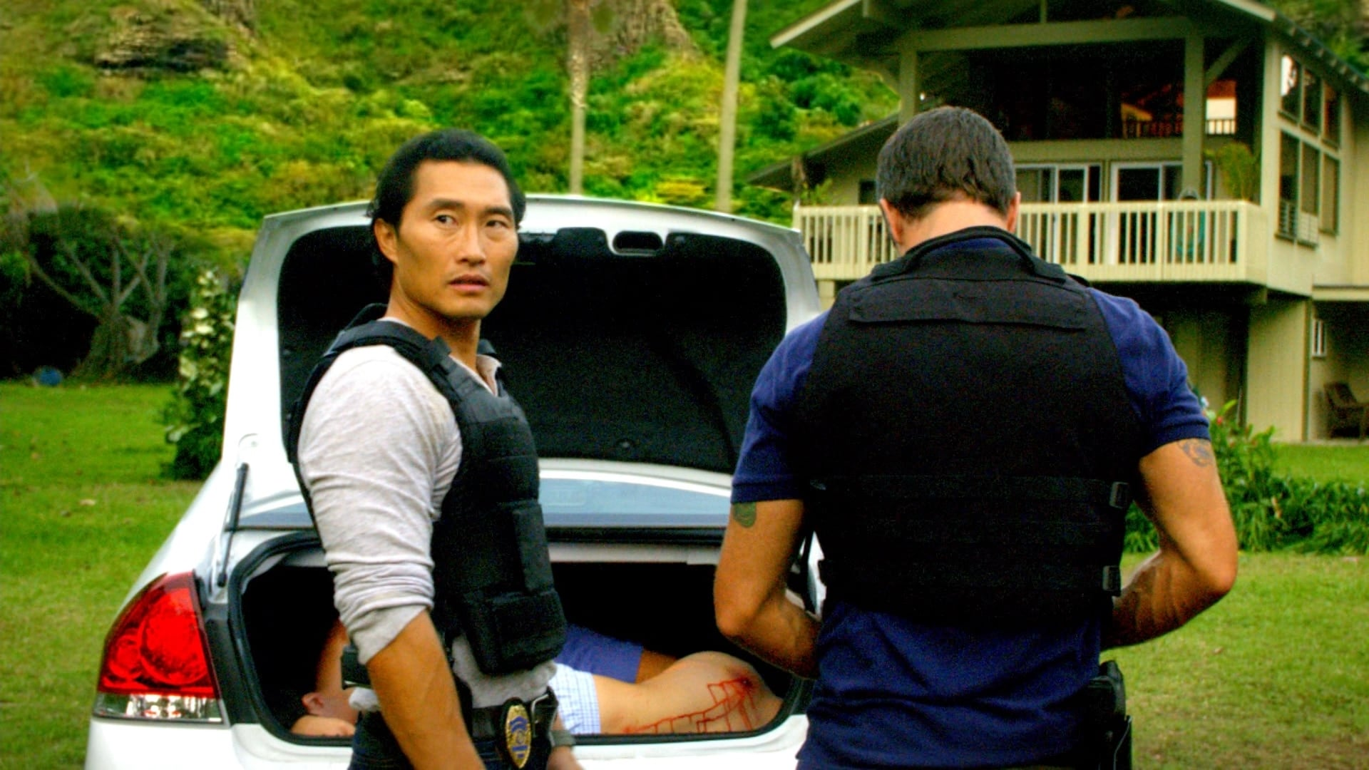 Hawaii Five-0 Season 1 :Episode 16  To Protect