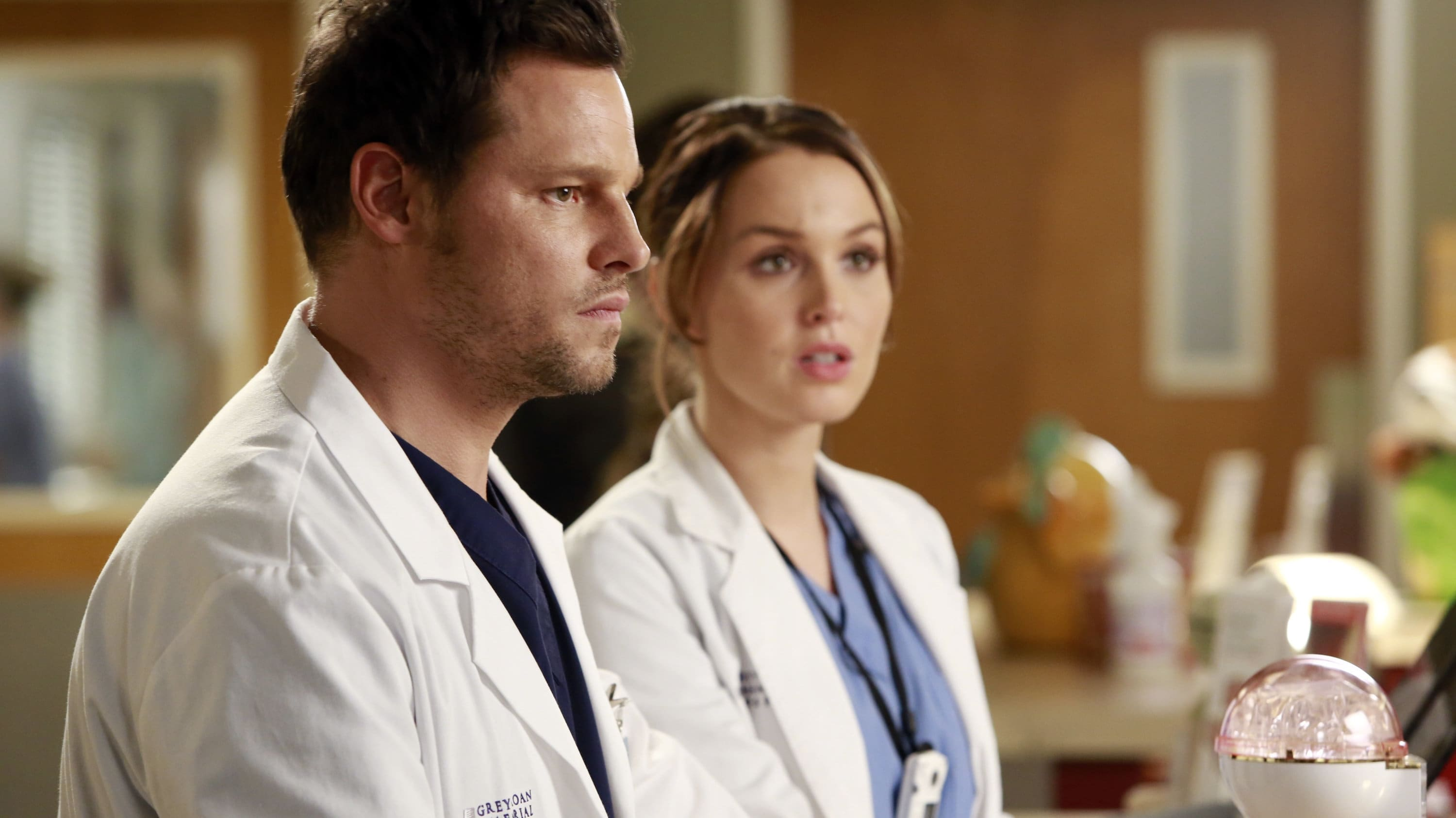 Grey's Anatomy Season 10 :Episode 15  Throwing it All Away
