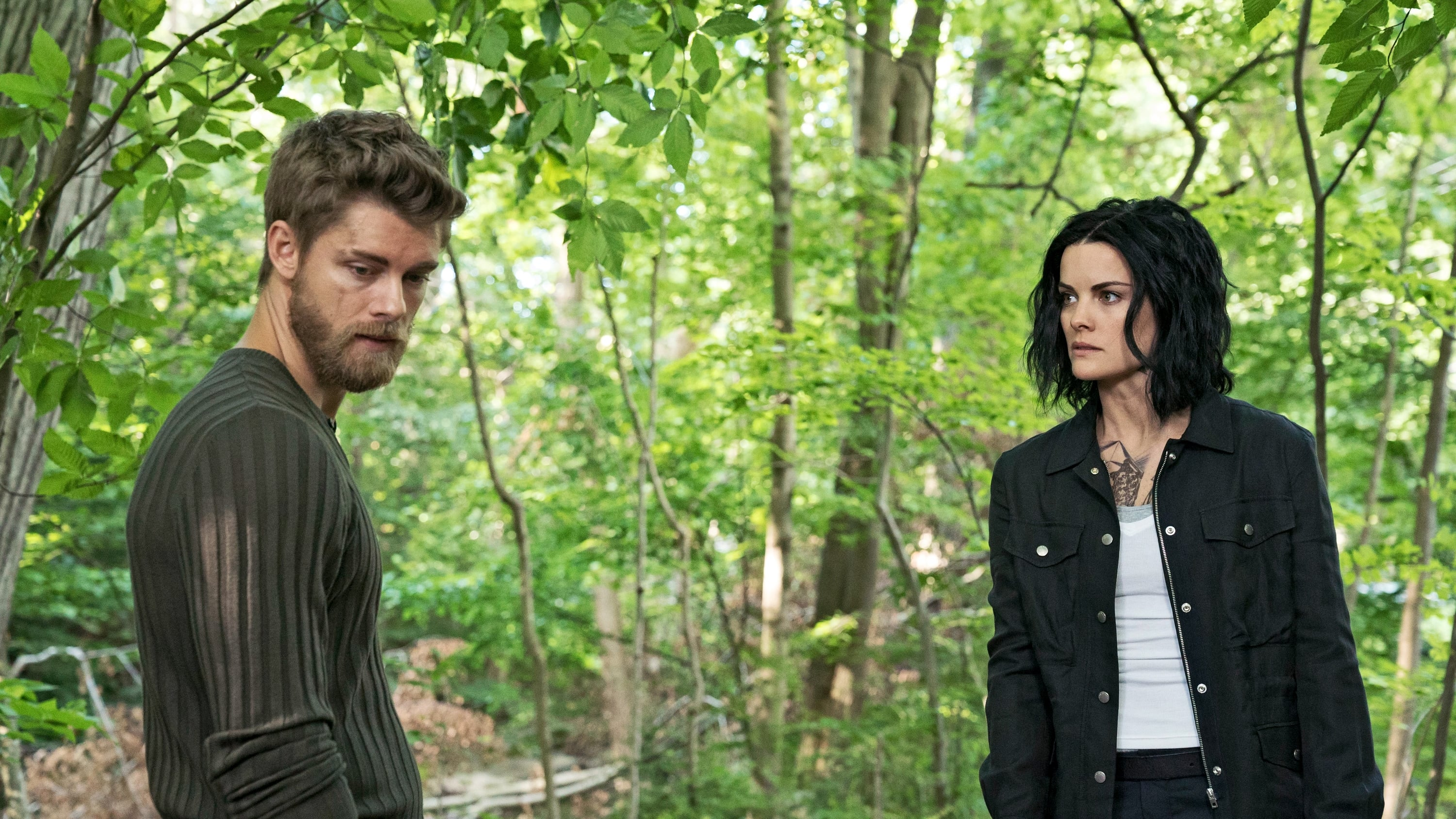 Blindspot Season 2 :Episode 3  Hero Fears Imminent Rot
