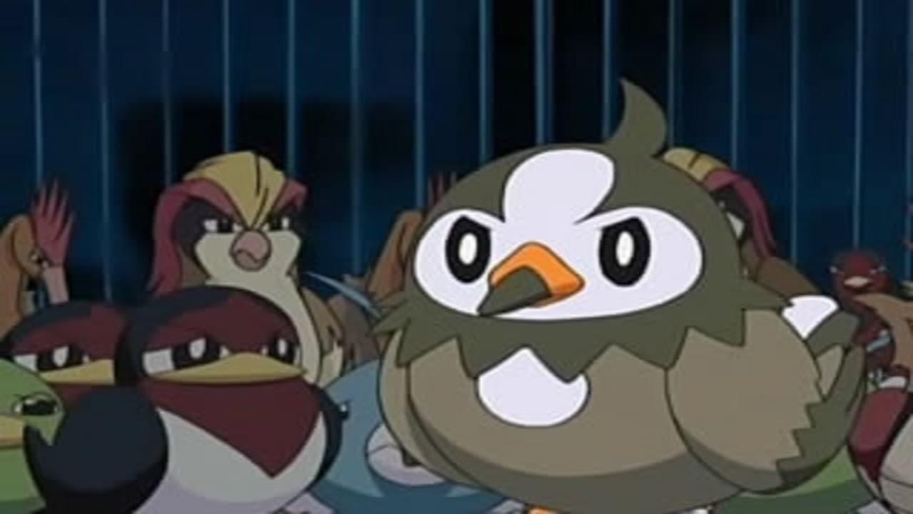 Pokémon Season 10 :Episode 13  A Staravia Is Born!