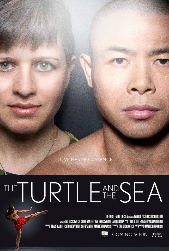 Ver The Turtle and the Sea Online HD Español (2014)