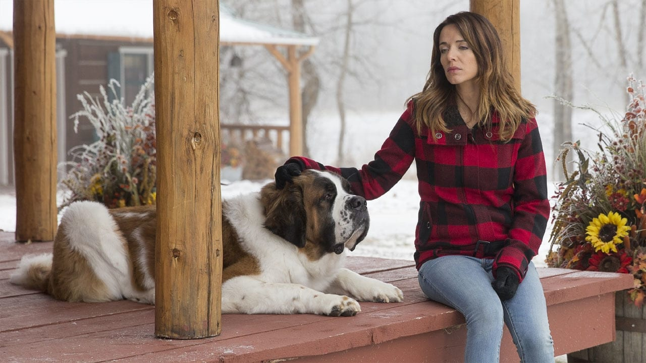 Heartland - Season 6 Episode 15 : After All We Have Been Through