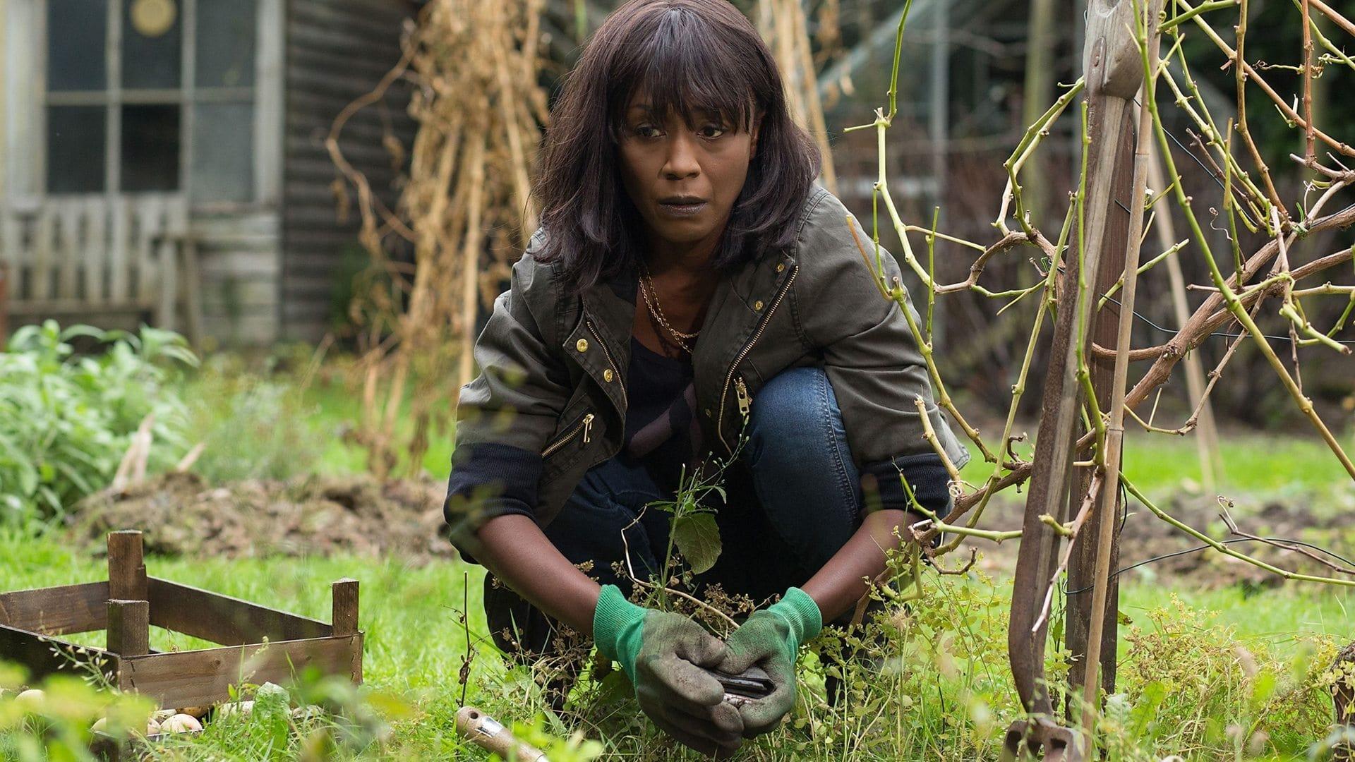 EastEnders Season 30 :Episode 185  25/11/2014