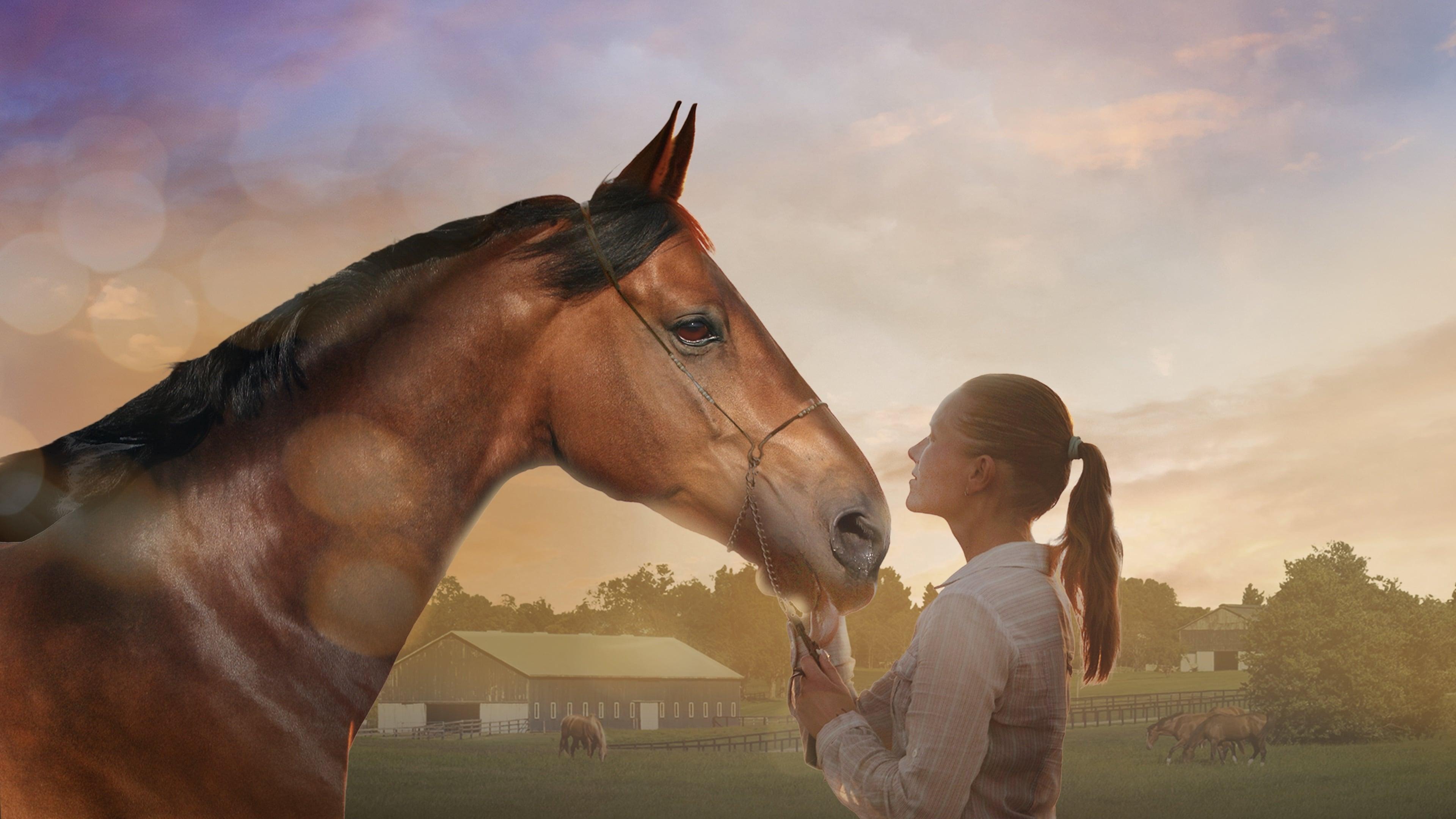 A Horse Tale Trailer