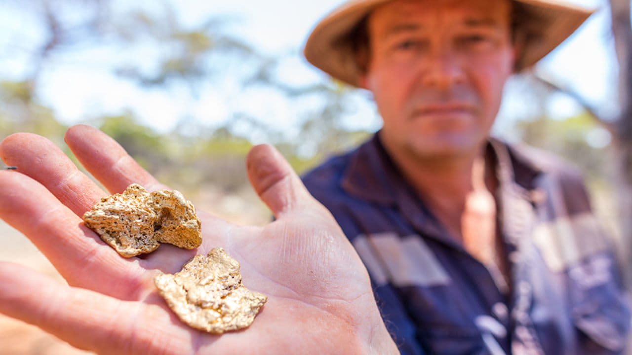 Aussie Gold Hunters