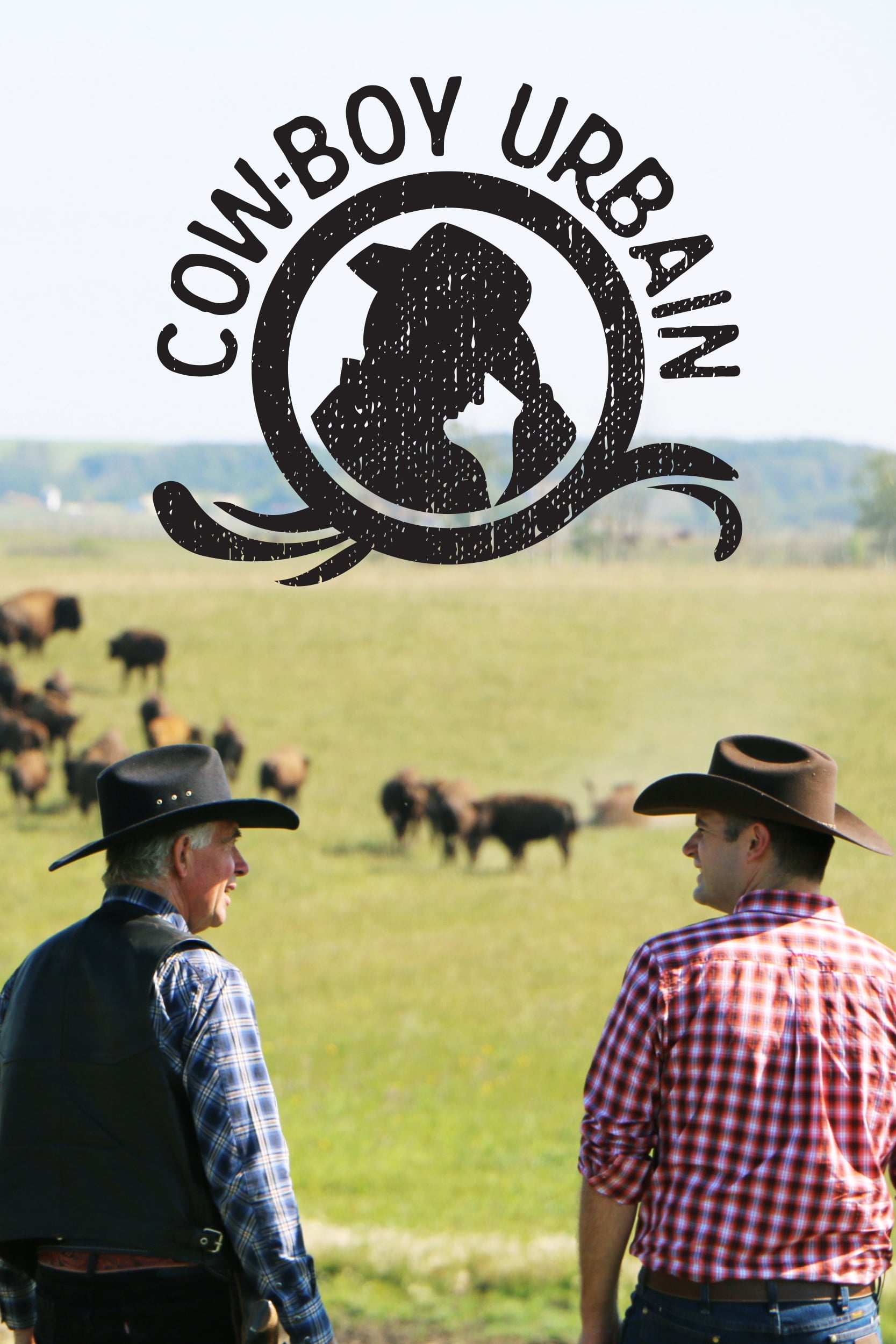 Cow-boy urbain TV Shows About Western
