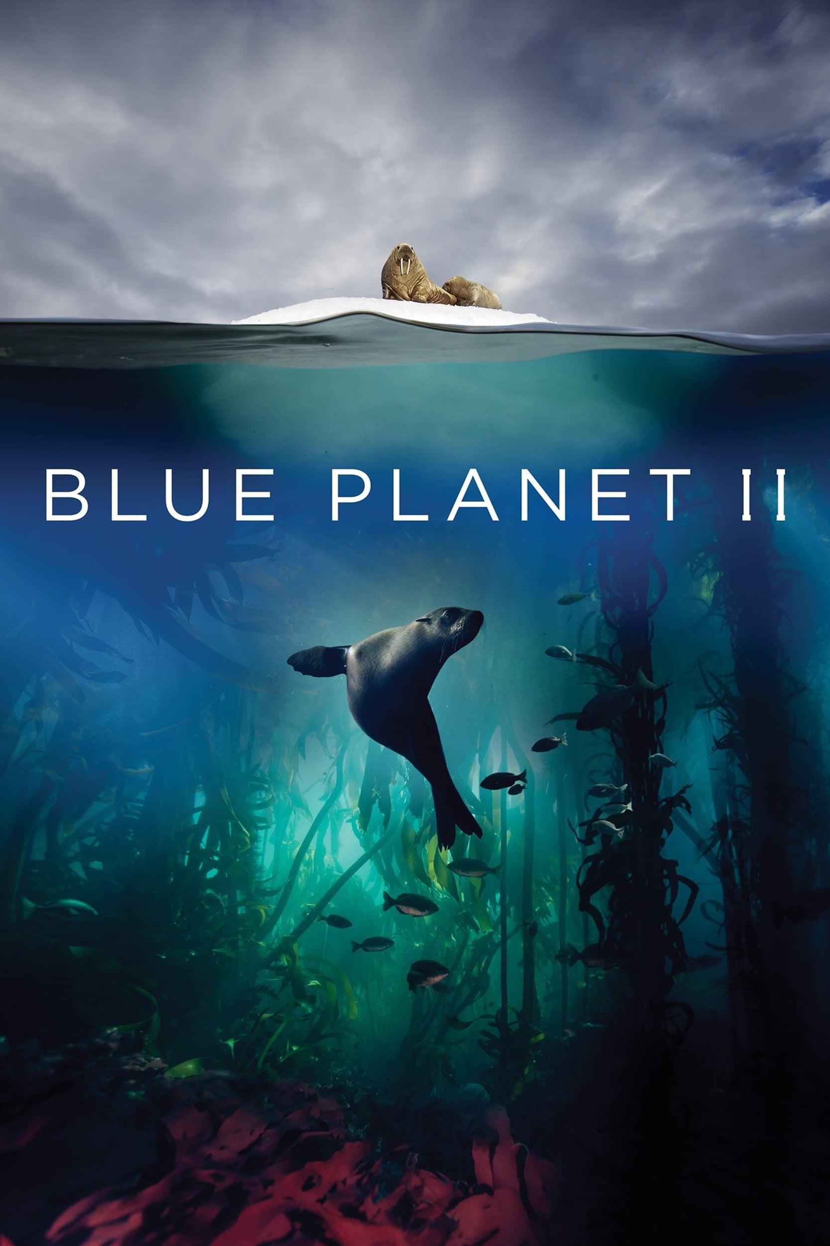 Avataras paskutinis oro valdytojas 1 sezonas online dating