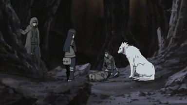 Naruto Shippūden Season 13 :Episode 279  White Zetsu's Trap