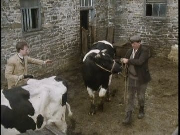 The Bull with the Bowler Hat-Azwaad Movie Database