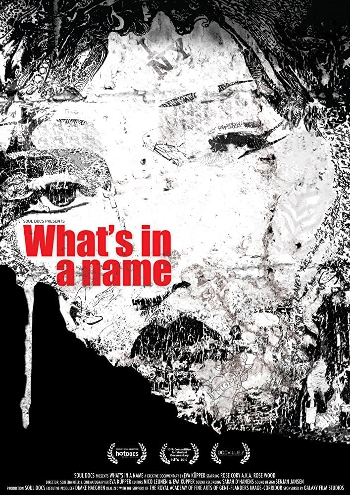 Ver What's in a Name Online HD Español (2009)