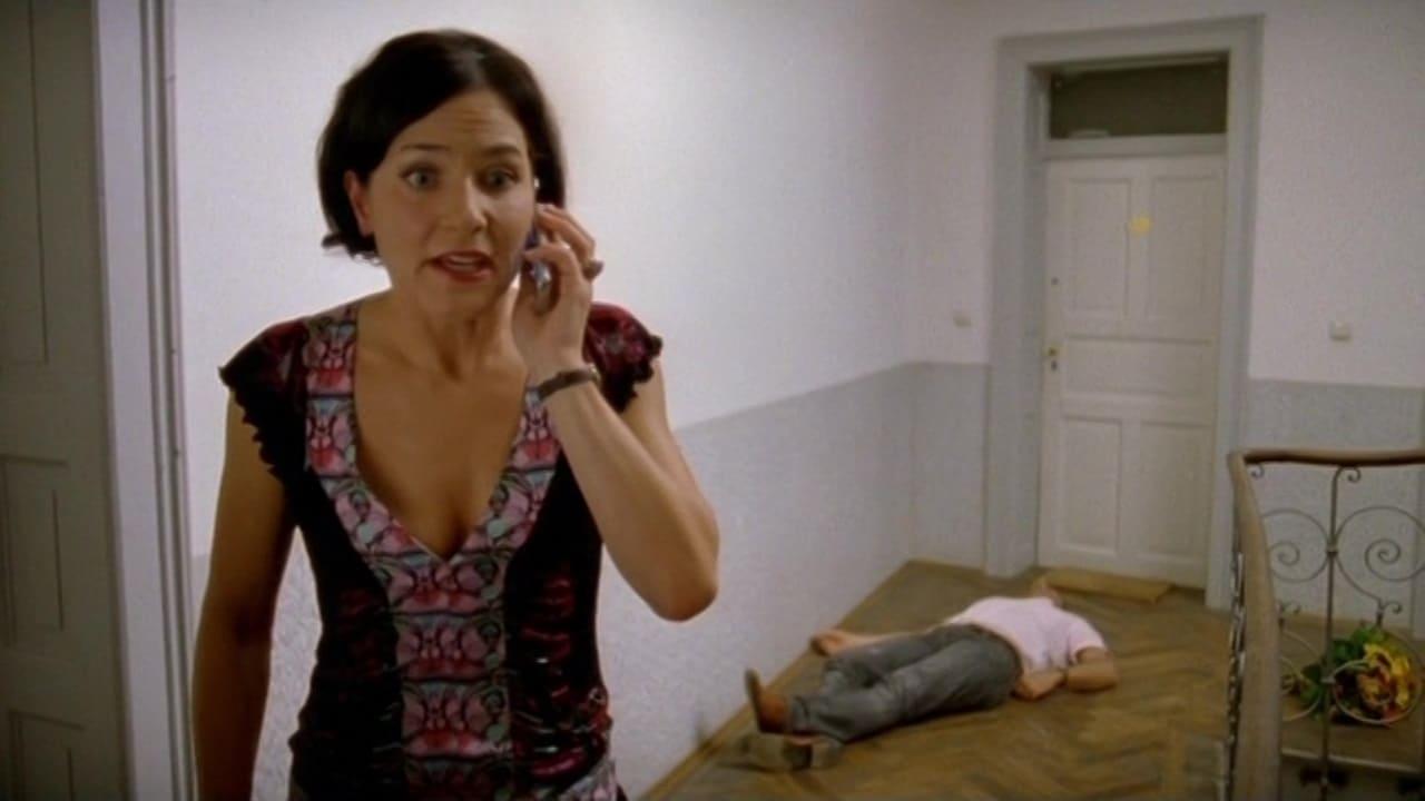 Die Rosenheim-Cops Season 11 :Episode 5  Der Fall Stockl