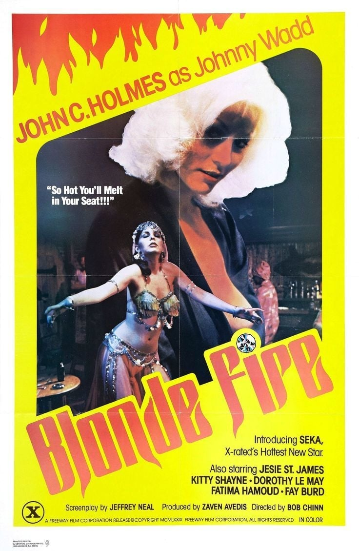 Ver Blonde Fire Online HD Español (1978)