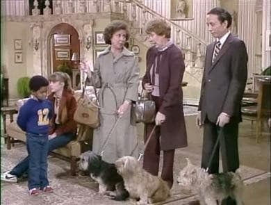 Diff'rent Strokes Season 2 :Episode 15  The Dog Story (a.k.a.) A Dog Story