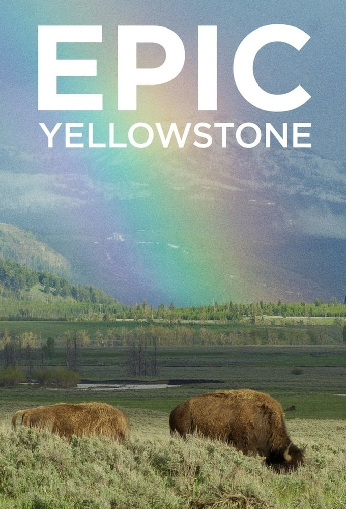 Epic Yellowstone TV Shows About Nature Documentary