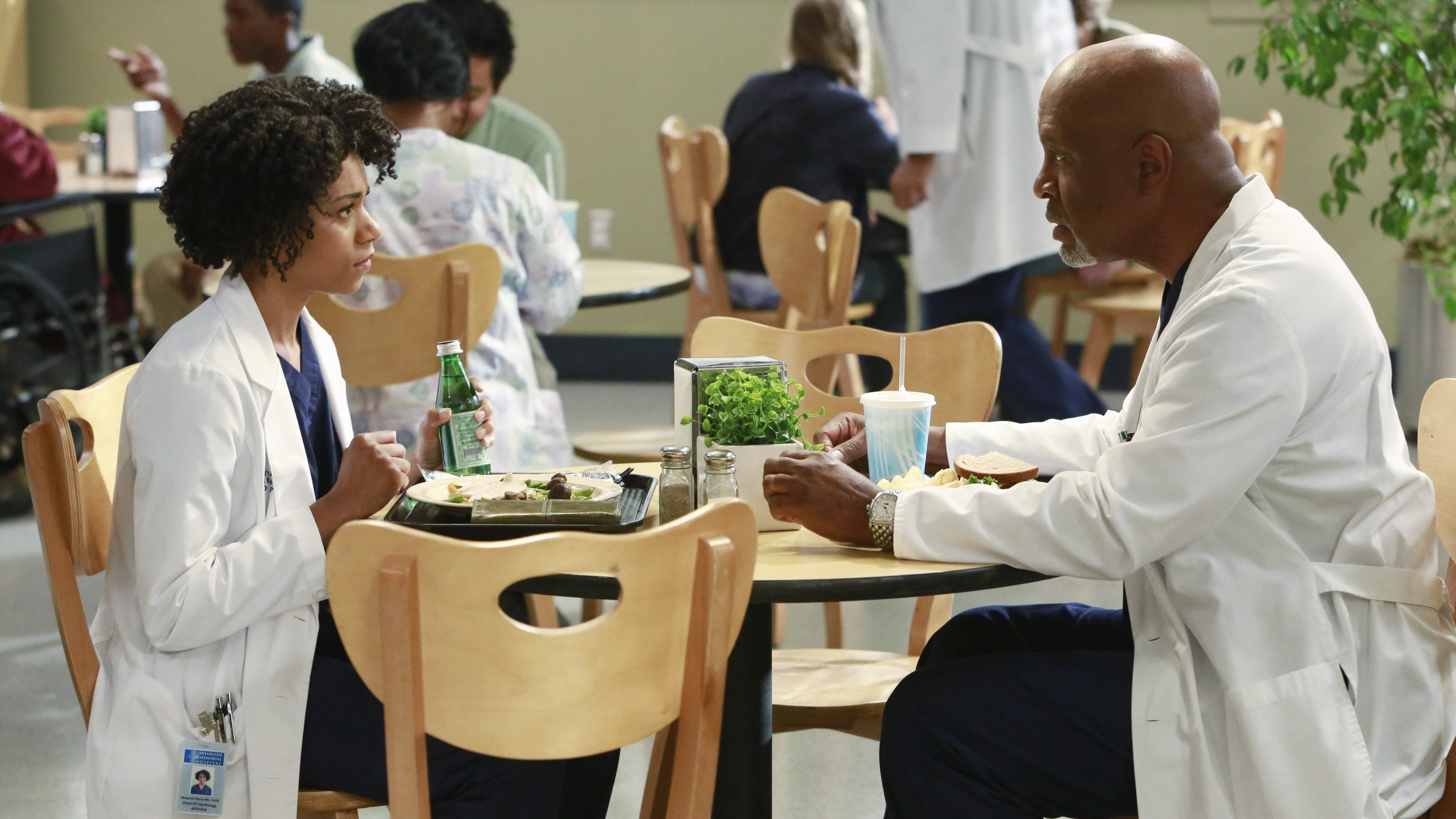 Grey's Anatomy Season 11 :Episode 2  Puzzle With a Piece Missing