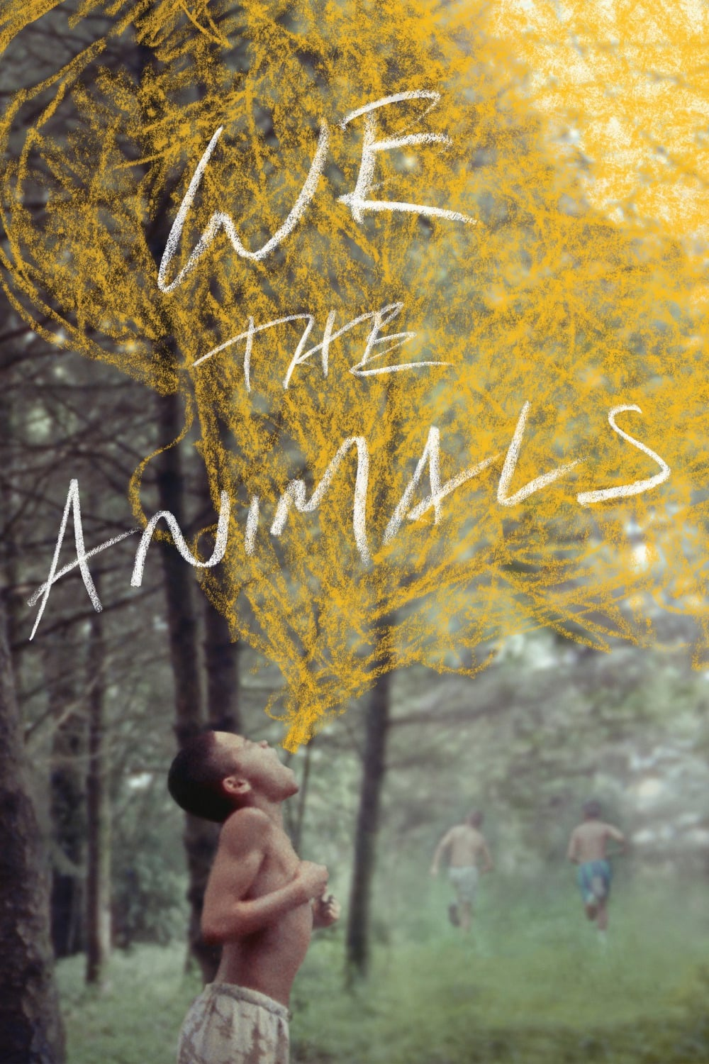 Poster and image movie Film We the Animals - We the Animals 2018