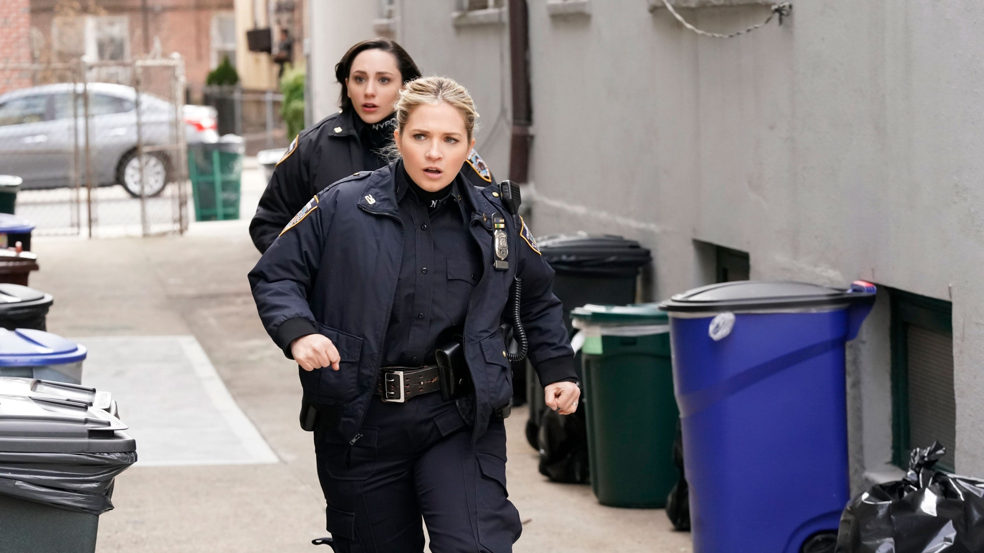 Blue Bloods Season 10 :Episode 16  The First 100 Days