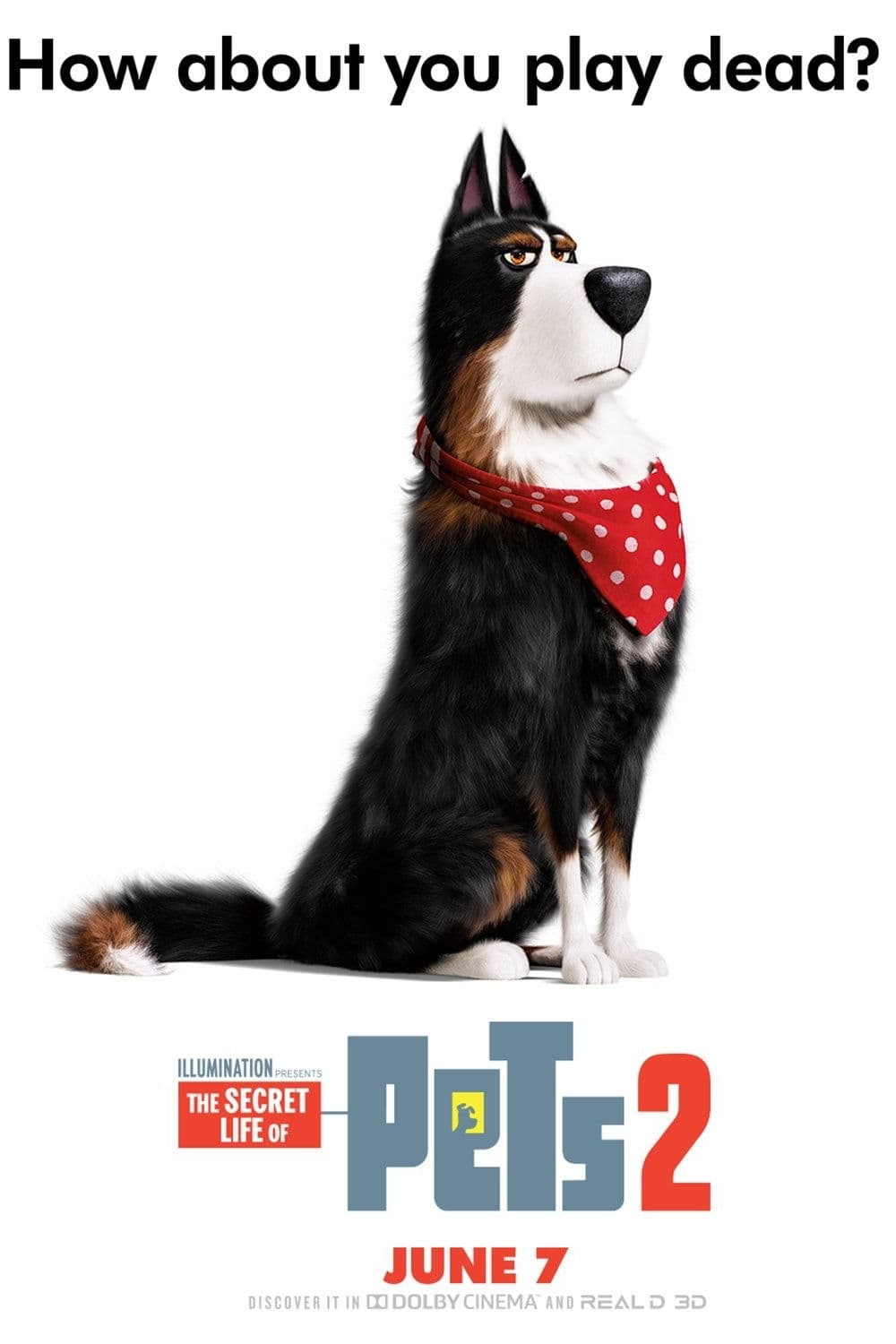 The Secret Life Of Pets 2 2019 Posters The Movie Database Tmdb