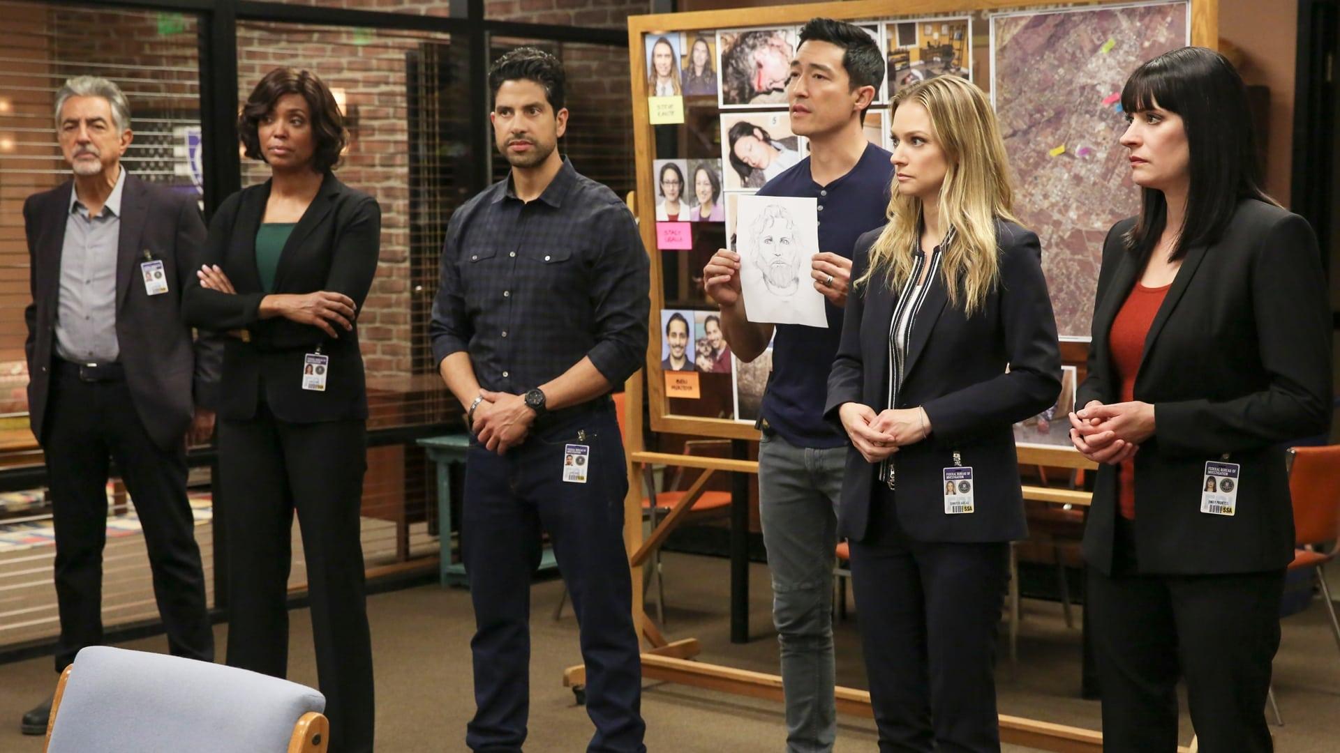 Criminal Minds Season 13 :Episode 21  Mixed Signals