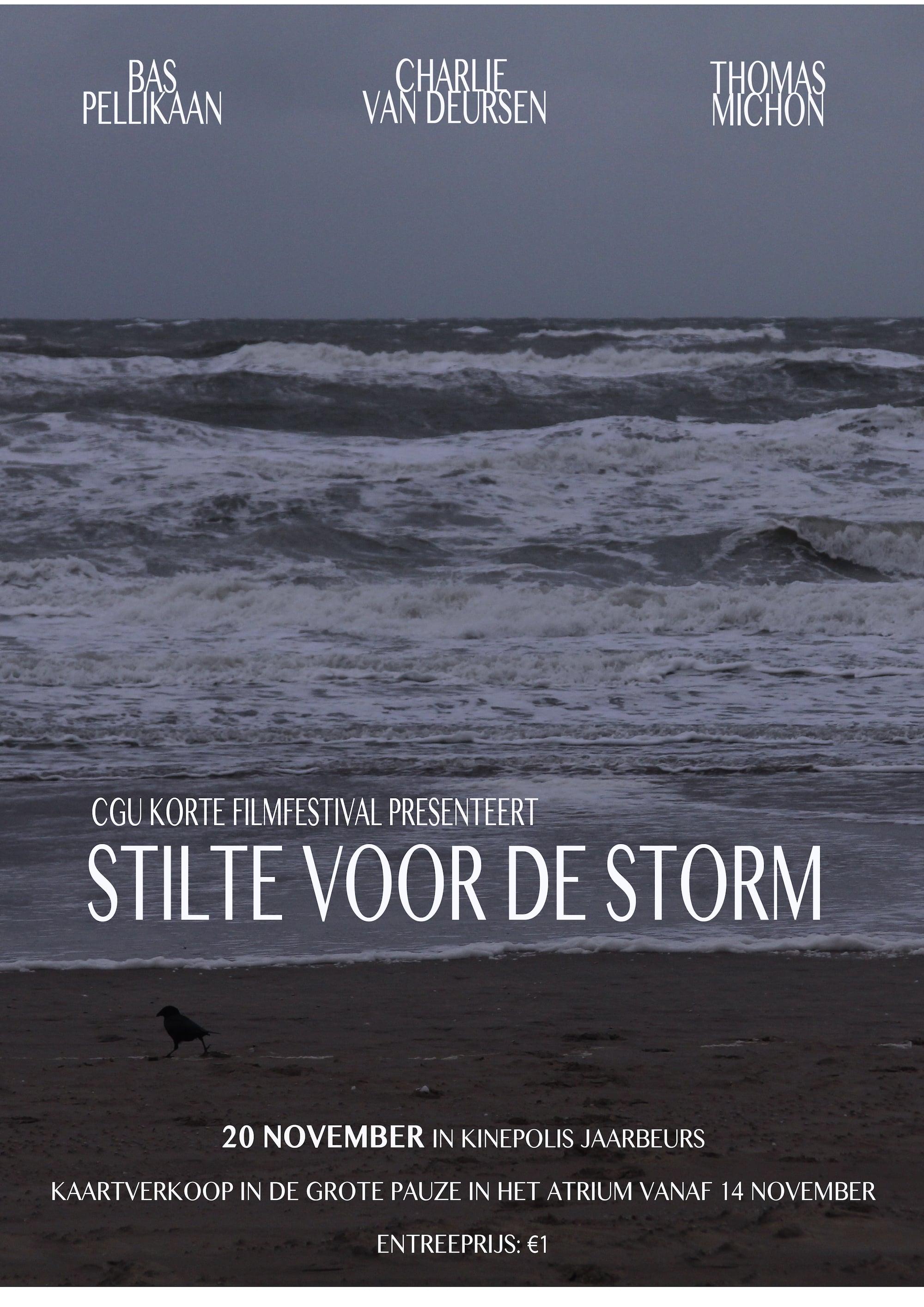 Ver Stilte voor de Storm Online HD Español ()