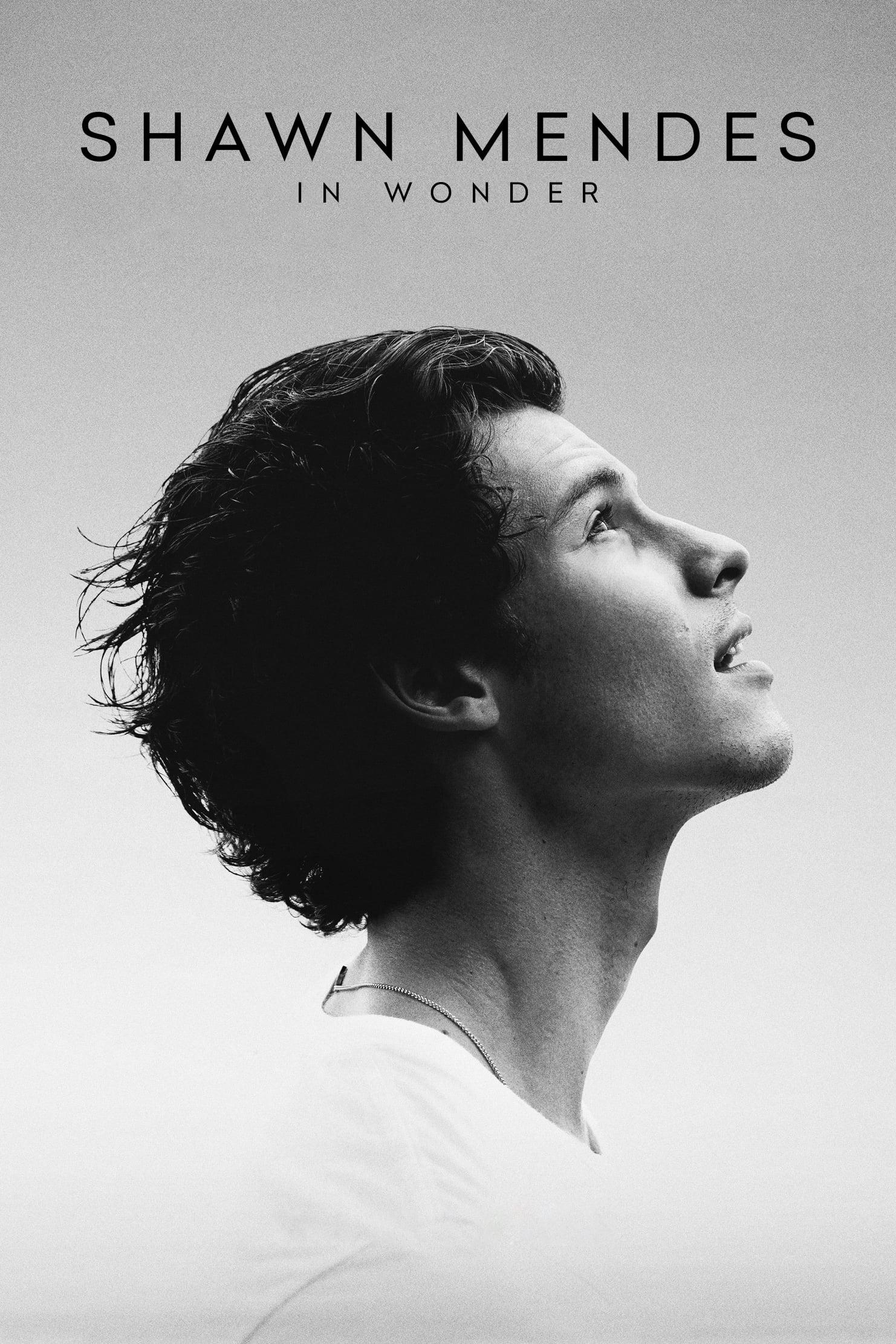 Shawn Mendes: In Wonder Legendado