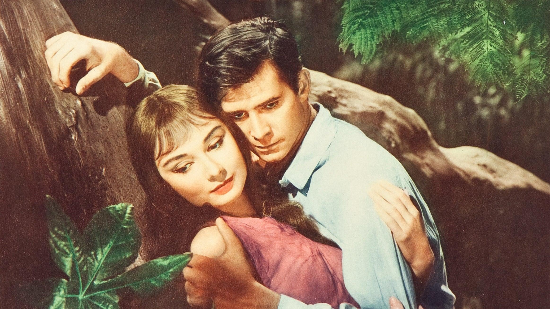 Ballad of a Soldier (1959) - AZ Movies
