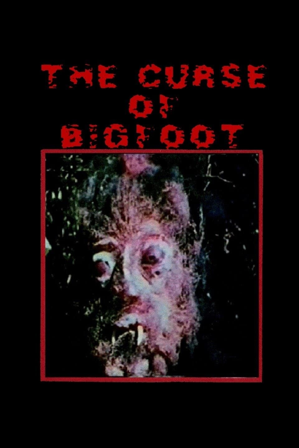 Curse of Bigfoot on FREECABLE TV