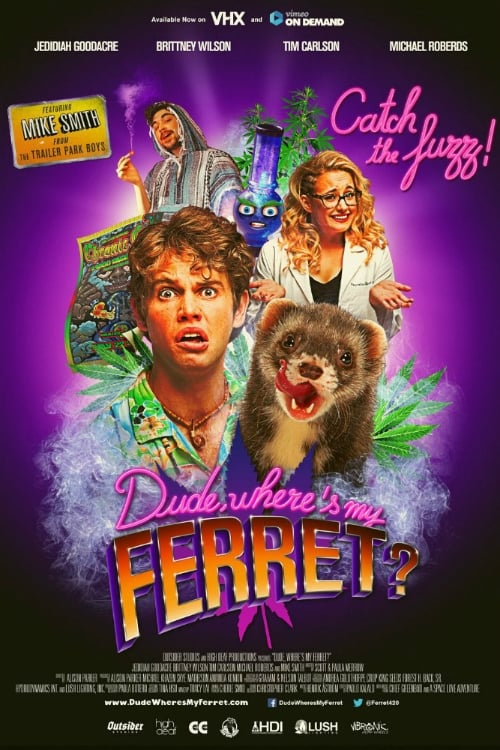 Dude, Where's My Ferret?